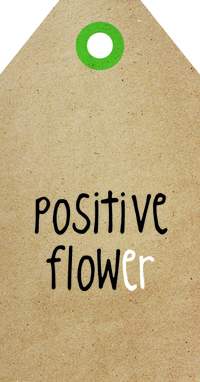 Zingever - Positive flower