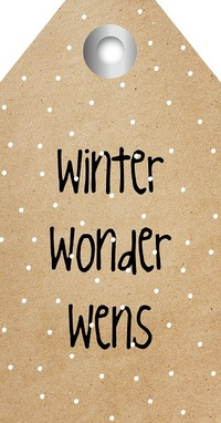 Zingever - Winter wonder wens